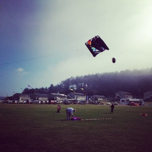 Whidbey Kite Festival 09/20/14