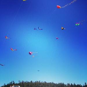 Whidbey Kite Festival /09/2014